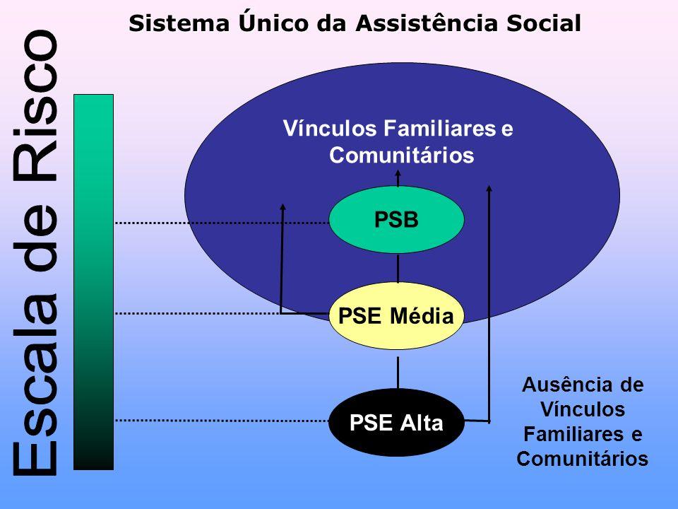 Sistema Único da Assistência Social Vínculos Familiares e Comunitários PSB PSE Média PSE Alta Ausência de Vínculos Familiares e Comunitários