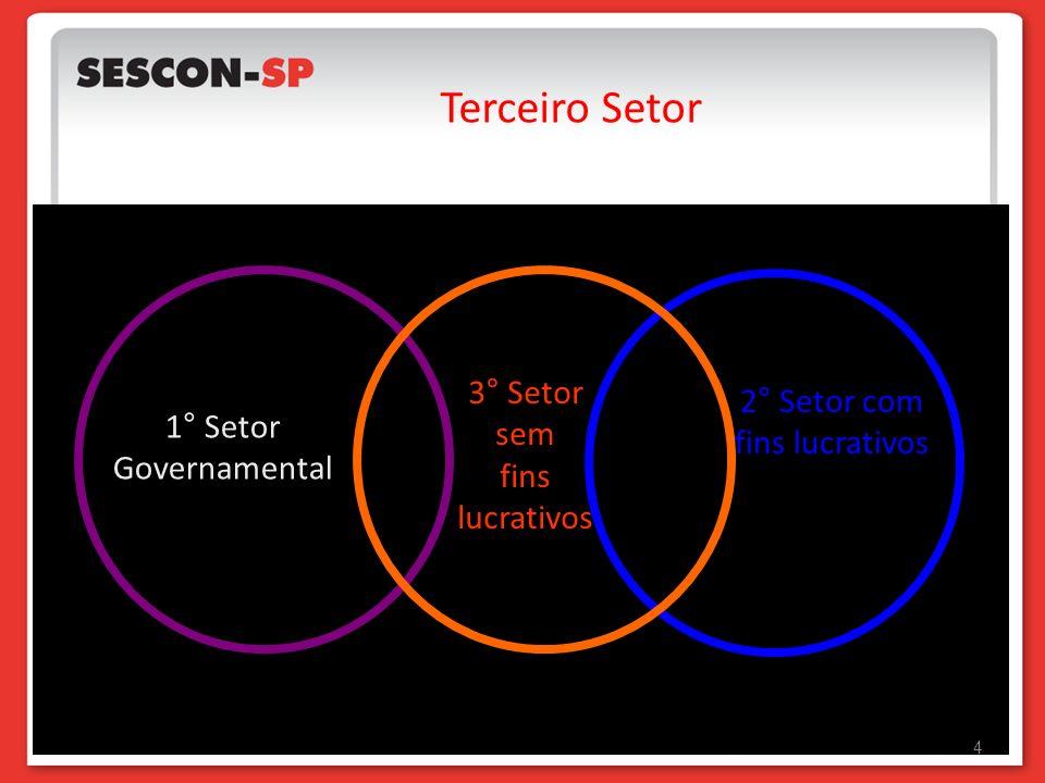 2° Setor com fins lucrativos 1° Setor Governamental 3° Setor sem fins lucrativos Terceiro Setor 4