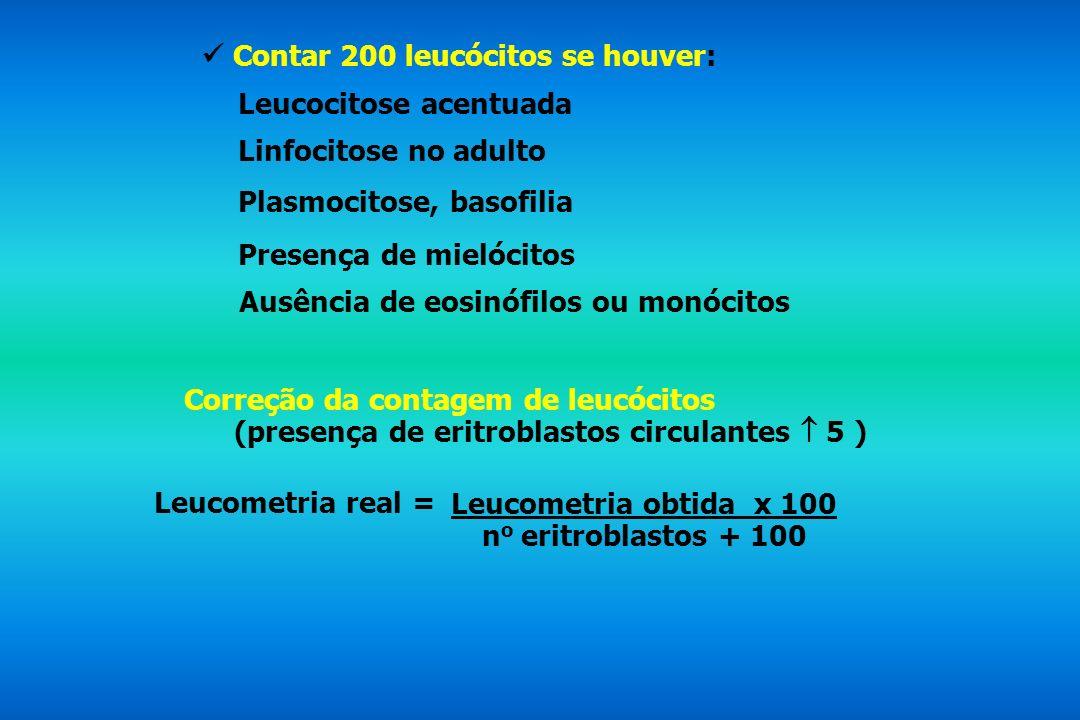 Contar 200 leucócitos se houver: Leucocitose acentuada Linfocitose no adulto Plasmocitose, basofilia Ausência de eosinófilos ou monócitos Presença de