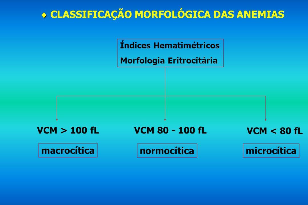 CLASSIFICAÇÃO MORFOLÓGICA DAS ANEMIAS Índices Hematimétricos Morfologia Eritrocitária VCM > 100 fLVCM 80 - 100 fL VCM < 80 fL macrocítica microcítican