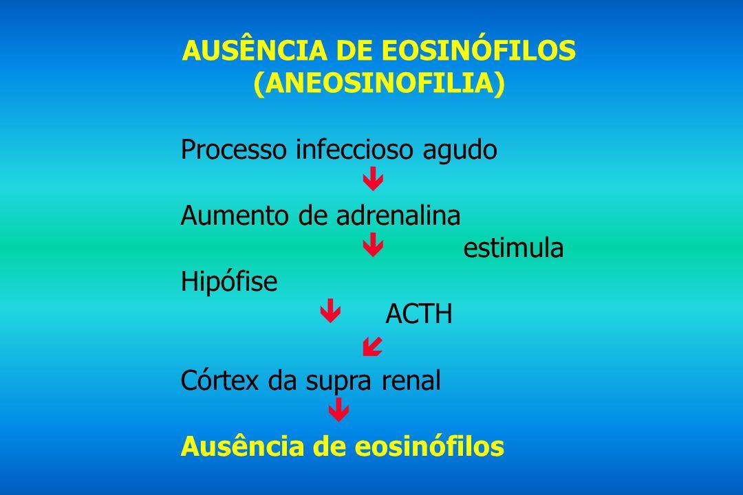 AUSÊNCIA DE EOSINÓFILOS (ANEOSINOFILIA) Processo infeccioso agudo Aumento de adrenalina estimula Hipófise ACTH Córtex da supra renal Ausência de eosin