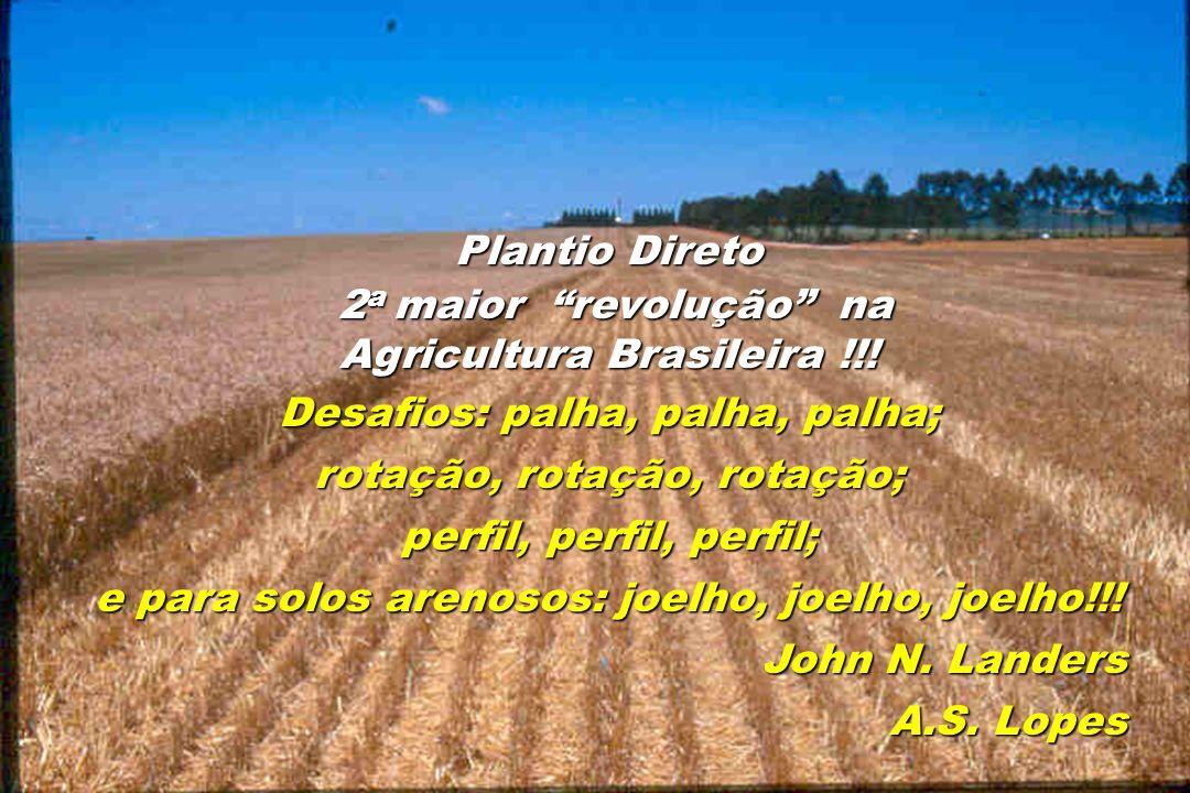 Plantio Direto 2 a maior revolução na 2 a maior revolução na Agricultura Brasileira !!! Desafios: palha, palha, palha; rotação, rotação, rotação; perf