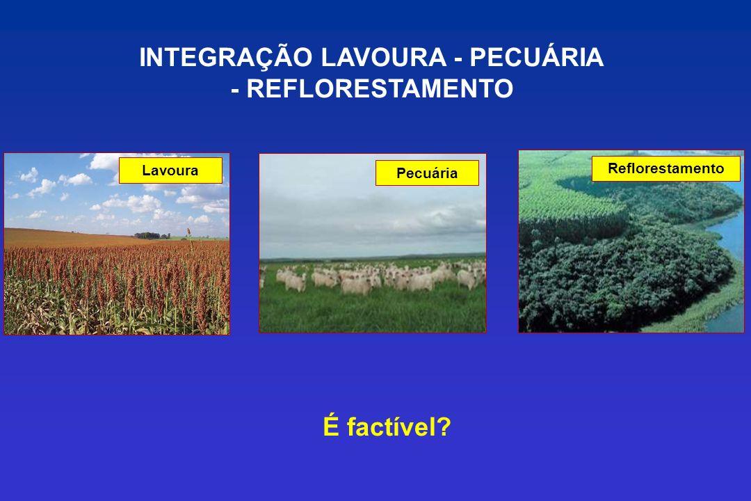 Lavoura Pecuária Reflorestamento INTEGRAÇÃO LAVOURA - PECUÁRIA - REFLORESTAMENTO É factível?