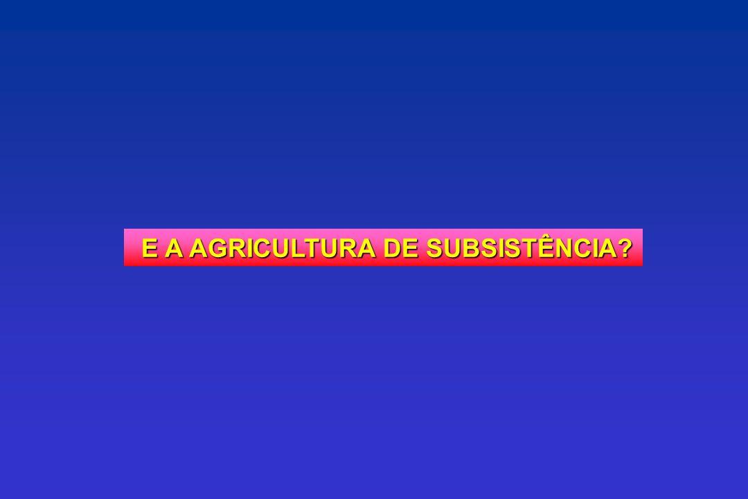 E A AGRICULTURA DE SUBSISTÊNCIA? E A AGRICULTURA DE SUBSISTÊNCIA?