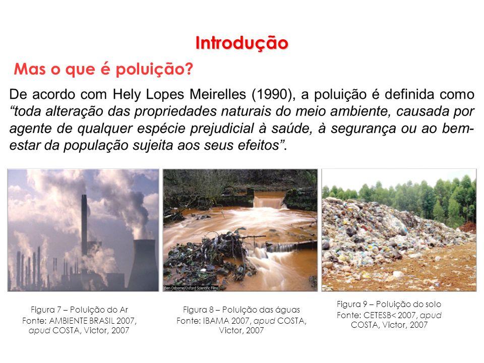 Introdução Mas o que é poluição? Figura 7 – Poluição do Ar Fonte: AMBIENTE BRASIL 2007, apud COSTA, Victor, 2007 Figura 9 – Poluição do solo Fonte: CE