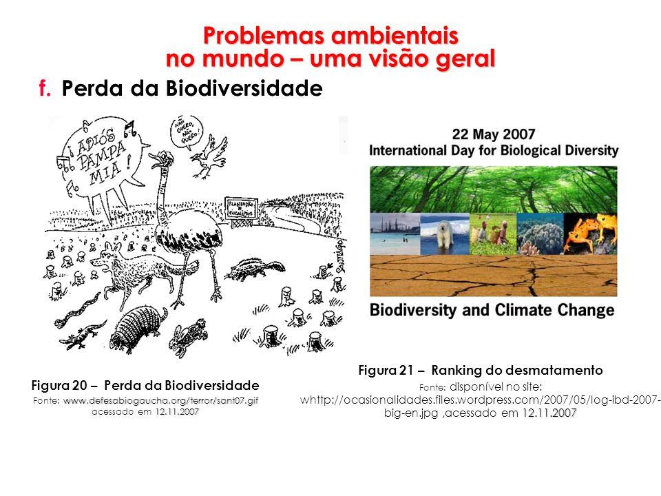 Problemas ambientais no mundo – uma visão geral f.Perda da Biodiversidade Figura 20 – Perda da Biodiversidade www.defesabiogaucha.org/terror/sant07.gi