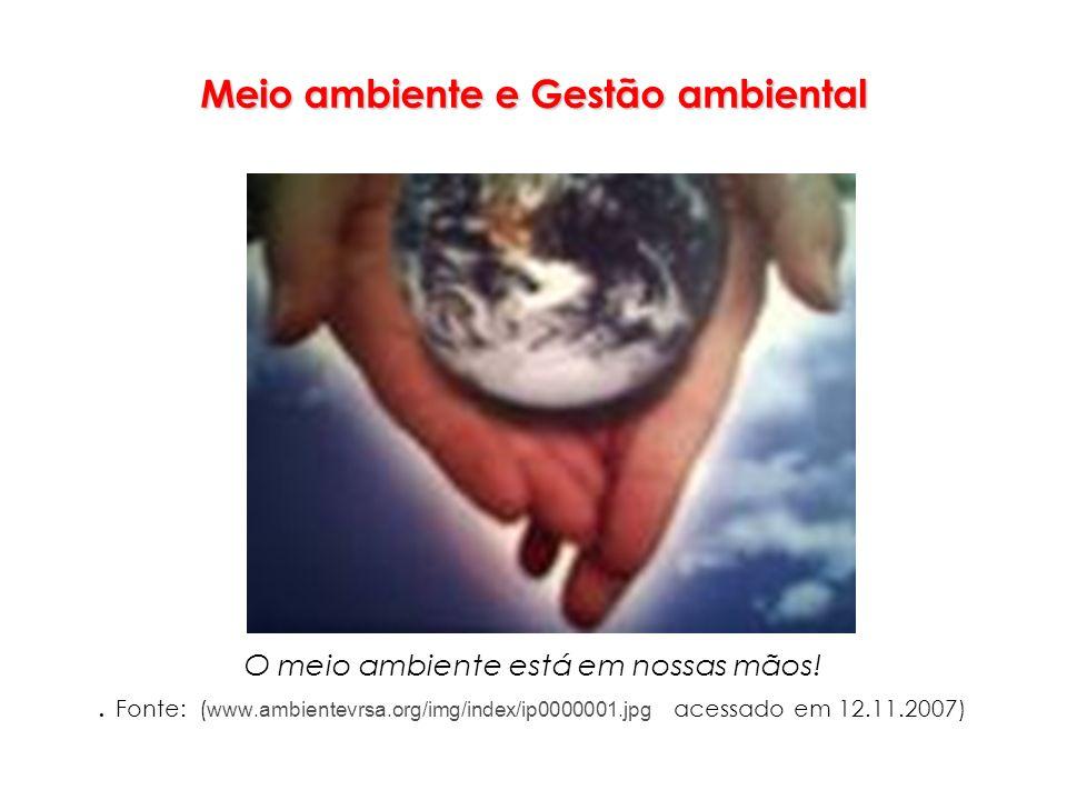 Meio ambiente e Gestão ambiental O meio ambiente está em nossas mãos!. Fonte: ( www.ambientevrsa.org/img/index/ip0000001.jpg acessado em 12.11.2007)