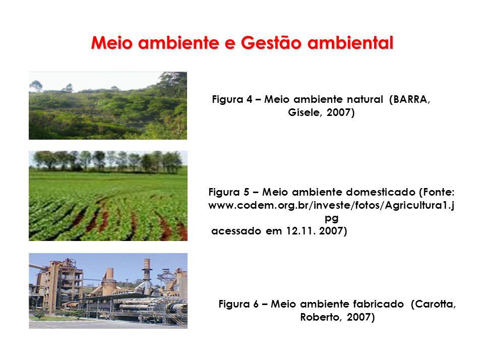 Meio ambiente e Gestão ambiental Figura 4 – Meio ambiente natural (BARRA, Gisele, 2007) Figura 6 – Meio ambiente fabricado (Carotta, Roberto, 2007) Fi