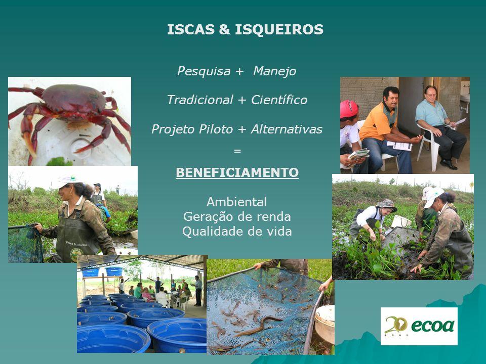 ISCAS & ISQUEIROS Pesquisa + Manejo Tradicional + Científico Projeto Piloto + Alternativas = BENEFICIAMENTO Ambiental Geração de renda Qualidade de vi