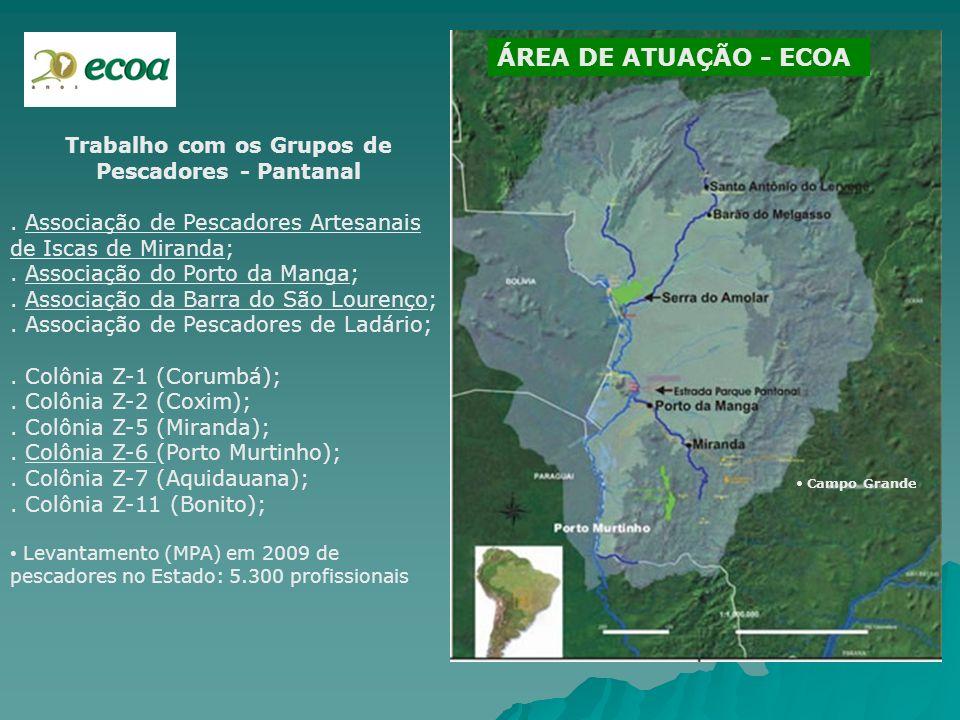 ÁREA DE ATUAÇÃO - ECOA Campo Grande Trabalho com os Grupos de Pescadores - Pantanal. Associação de Pescadores Artesanais de Iscas de Miranda;. Associa