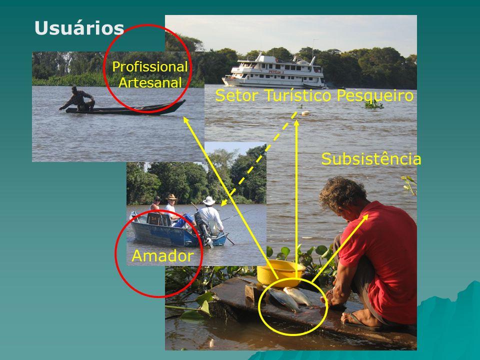 Subsistência Setor Turístico Pesqueiro Amador Profissional Artesanal Usuários