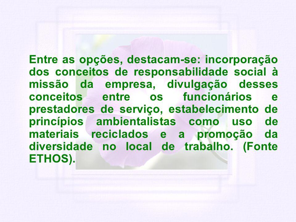 Entre as opções, destacam-se: incorporação dos conceitos de responsabilidade social à missão da empresa, divulgação desses conceitos entre os funcioná