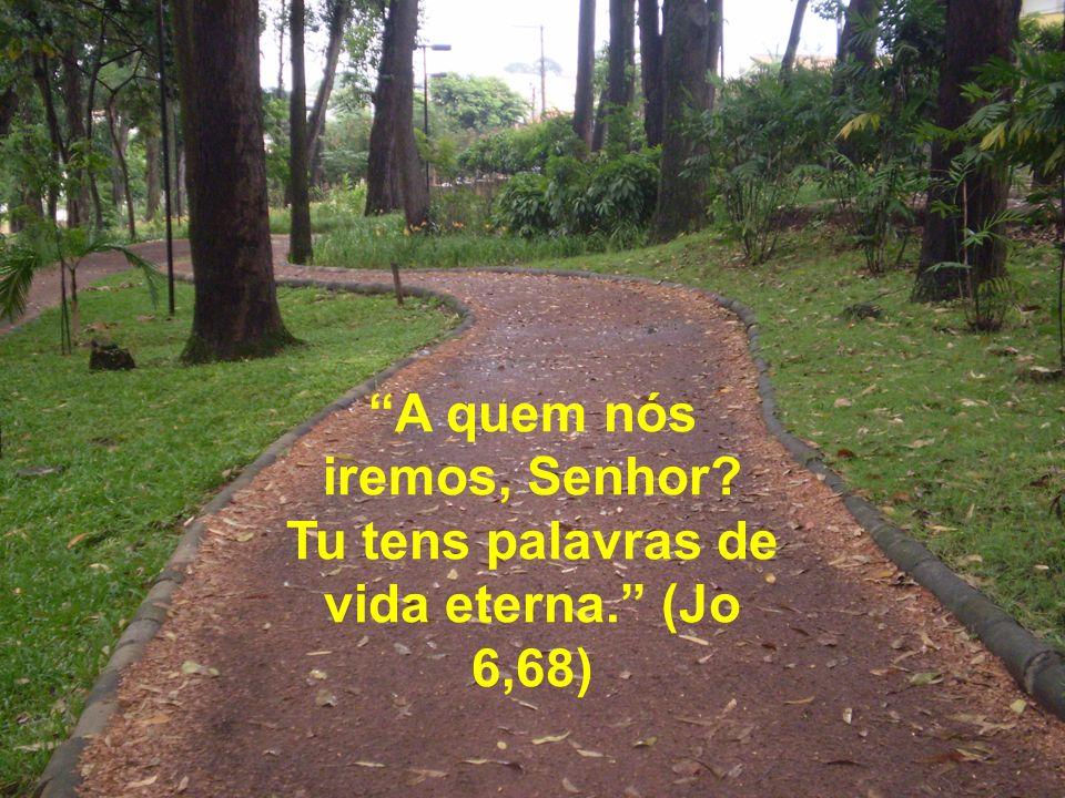 A quem nós iremos, Senhor? Tu tens palavras de vida eterna. (Jo 6,68)