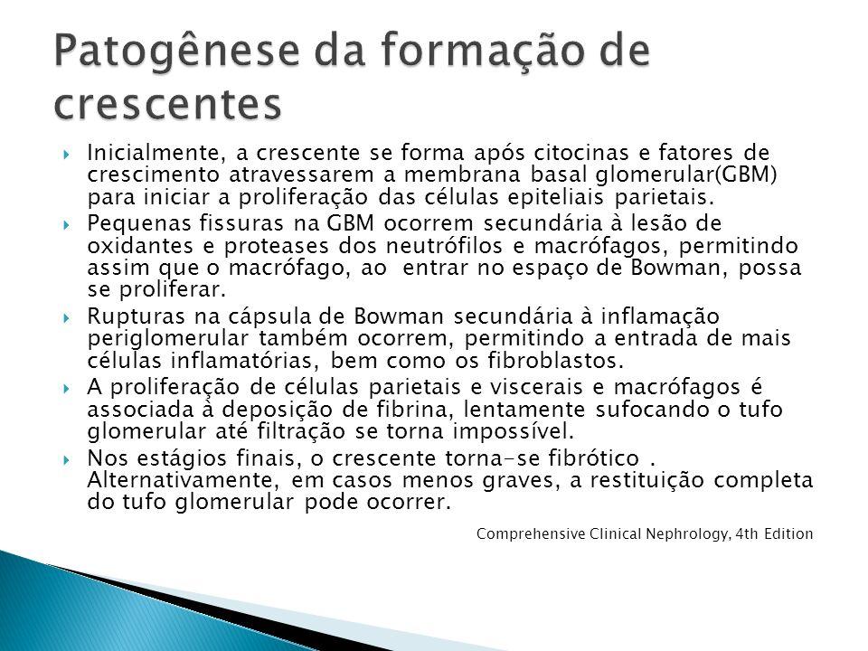 Inicialmente, a crescente se forma após citocinas e fatores de crescimento atravessarem a membrana basal glomerular(GBM) para iniciar a proliferação d