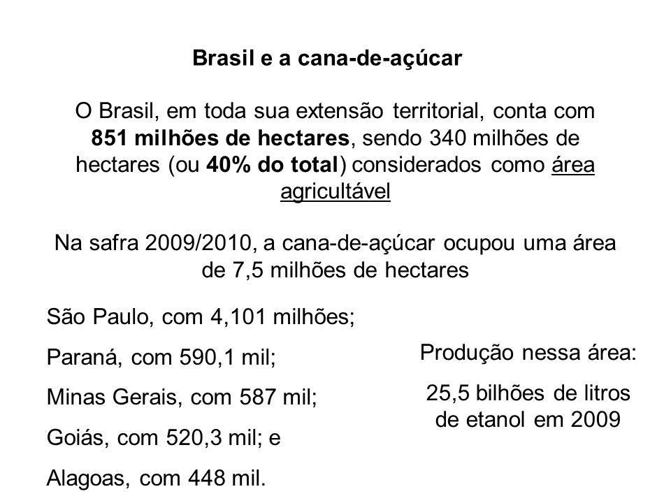 Brasil e a cana-de-açúcar O Brasil, em toda sua extensão territorial, conta com 851 milhões de hectares, sendo 340 milhões de hectares (ou 40% do tota