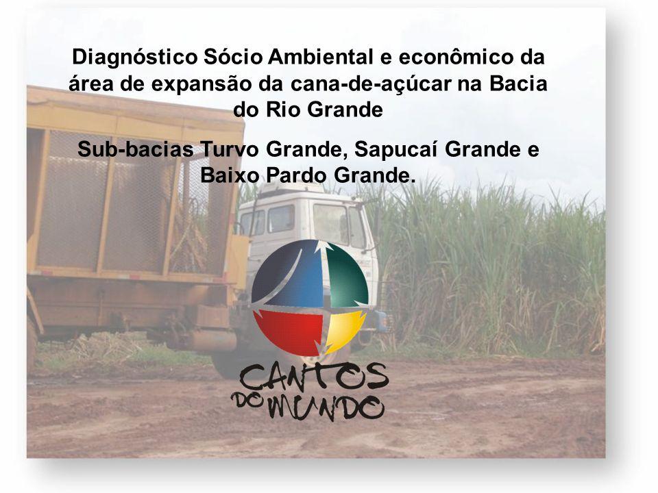 Diagnóstico Sócio Ambiental e econômico da área de expansão da cana-de-açúcar na Bacia do Rio Grande Sub-bacias Turvo Grande, Sapucaí Grande e Baixo P