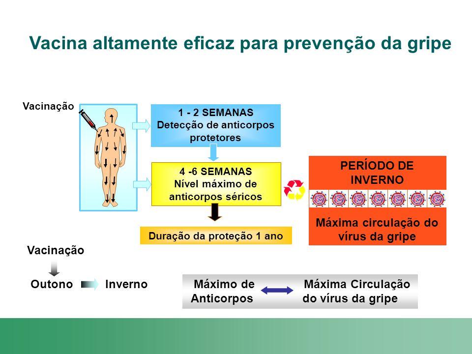 PERÍODO DE INVERNO Máxima circulação do vírus da gripe Vacinação Vacina altamente eficaz para prevenção da gripe 1 - 2 SEMANAS Detecção de anticorpos