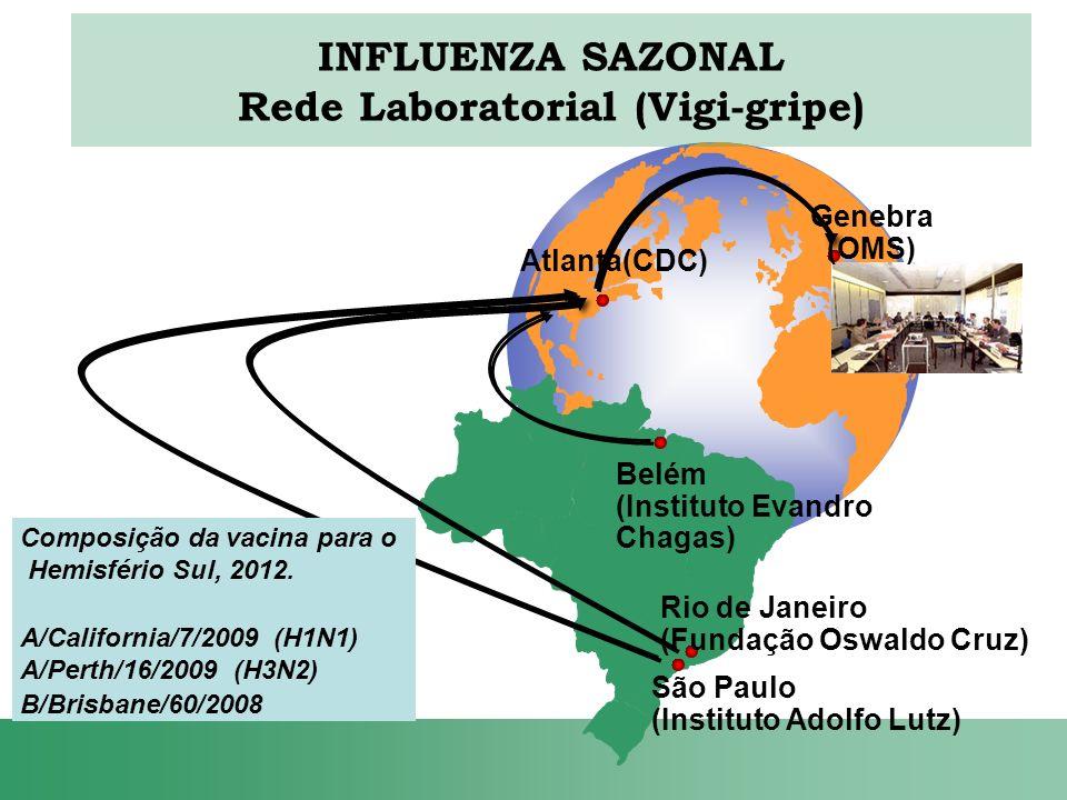 Belém (Instituto Evandro Chagas) Rio de Janeiro (Fundação Oswaldo Cruz) São Paulo (Instituto Adolfo Lutz) Composição da vacina para o Hemisfério Sul,