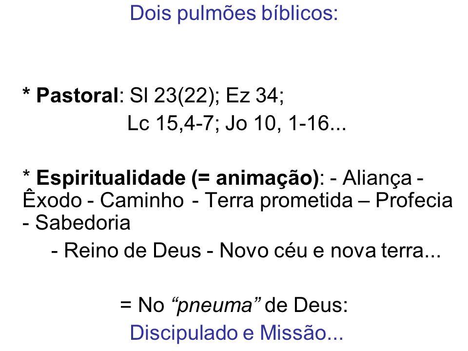 Dois pulmões bíblicos: * Pastoral: Sl 23(22); Ez 34; Lc 15,4-7; Jo 10, 1-16... * Espiritualidade (= animação): - Aliança - Êxodo - Caminho - Terra pro