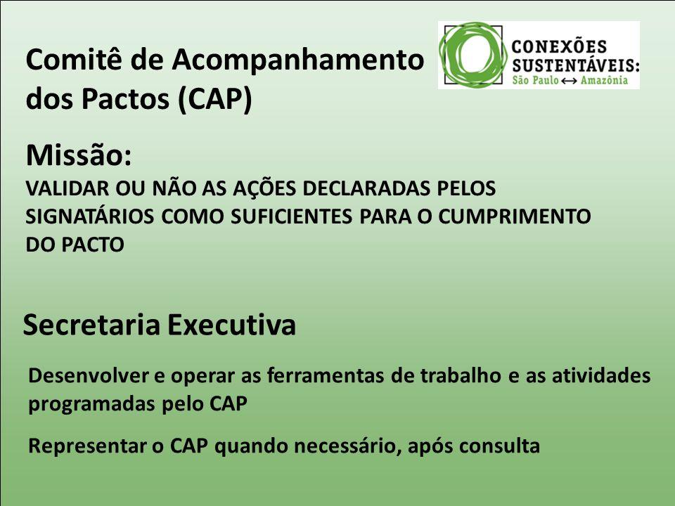Comitê de Acompanhamento dos Pactos (CAP) Missão: VALIDAR OU NÃO AS AÇÕES DECLARADAS PELOS SIGNATÁRIOS COMO SUFICIENTES PARA O CUMPRIMENTO DO PACTO Se