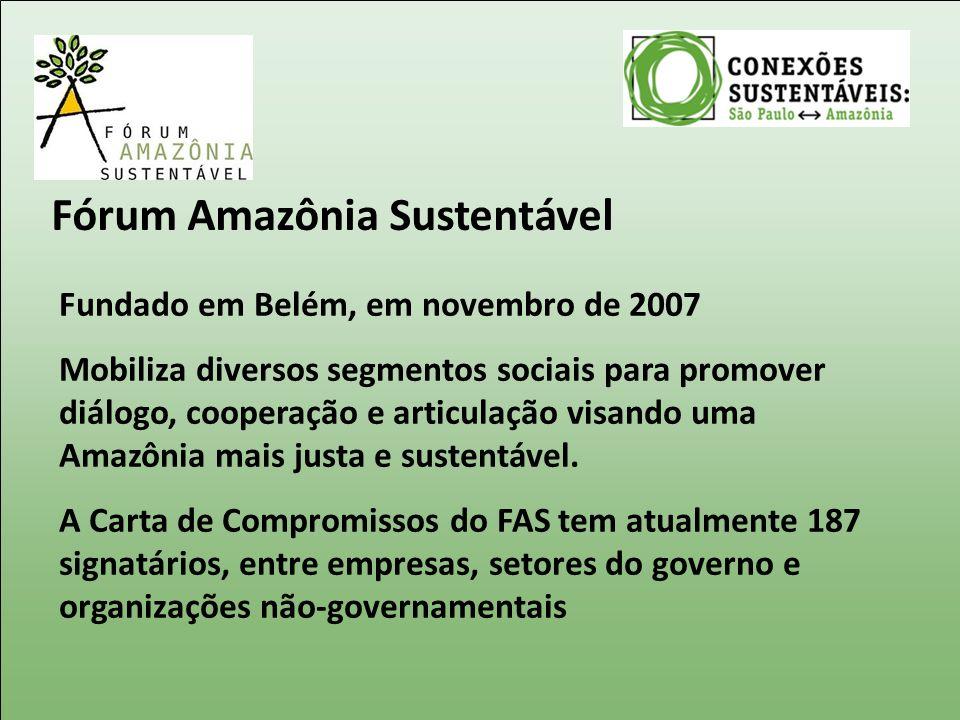 Fórum Amazônia Sustentável Fundado em Belém, em novembro de 2007 Mobiliza diversos segmentos sociais para promover diálogo, cooperação e articulação v