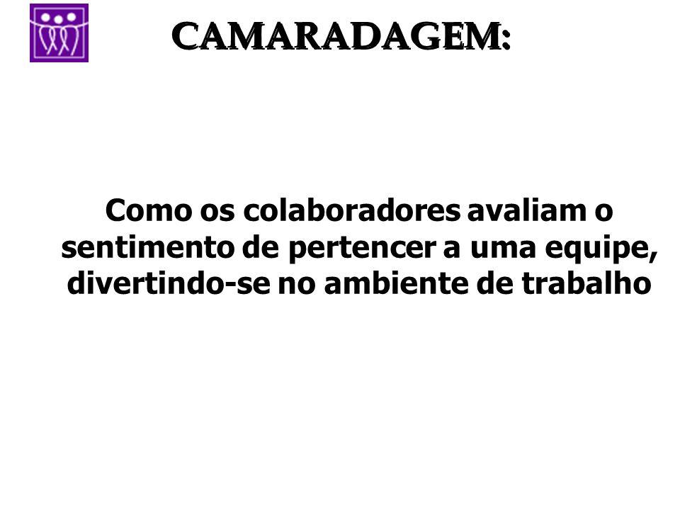 CAMARADAGEM: Como os colaboradores avaliam o sentimento de pertencer a uma equipe, divertindo-se no ambiente de trabalho