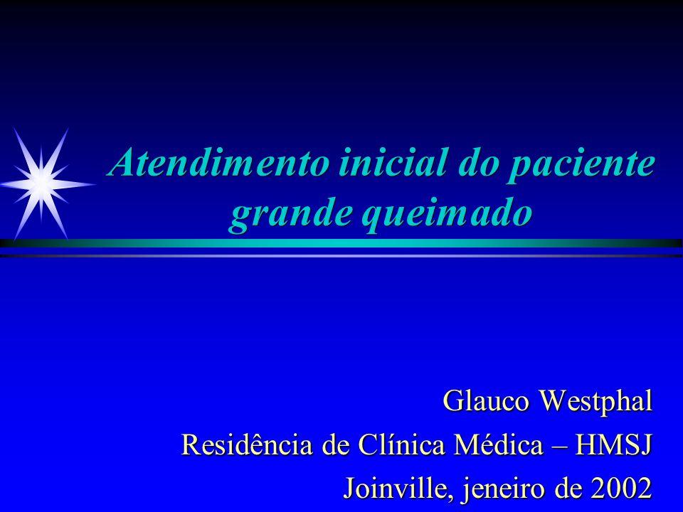Atendimento inicial do paciente grande queimado Glauco Westphal Glauco Westphal Residência de Clínica Médica – HMSJ Joinville, jeneiro de 2002
