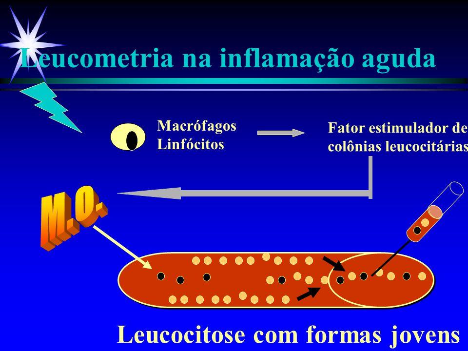 ESTÍMULO Dilatação arteriolar Abertura do leito capilar Acúmulo extra-vascular de líquido protéico PG, PAF, NO LT, PAF, C3,C5