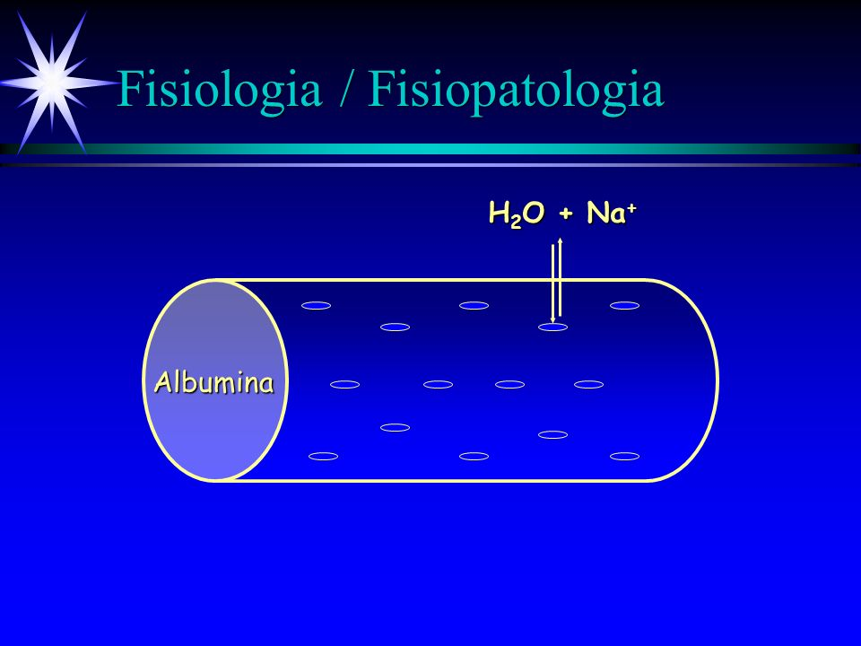 Fisiologia / Fisiopatologia H 2 O + Na + Albumina