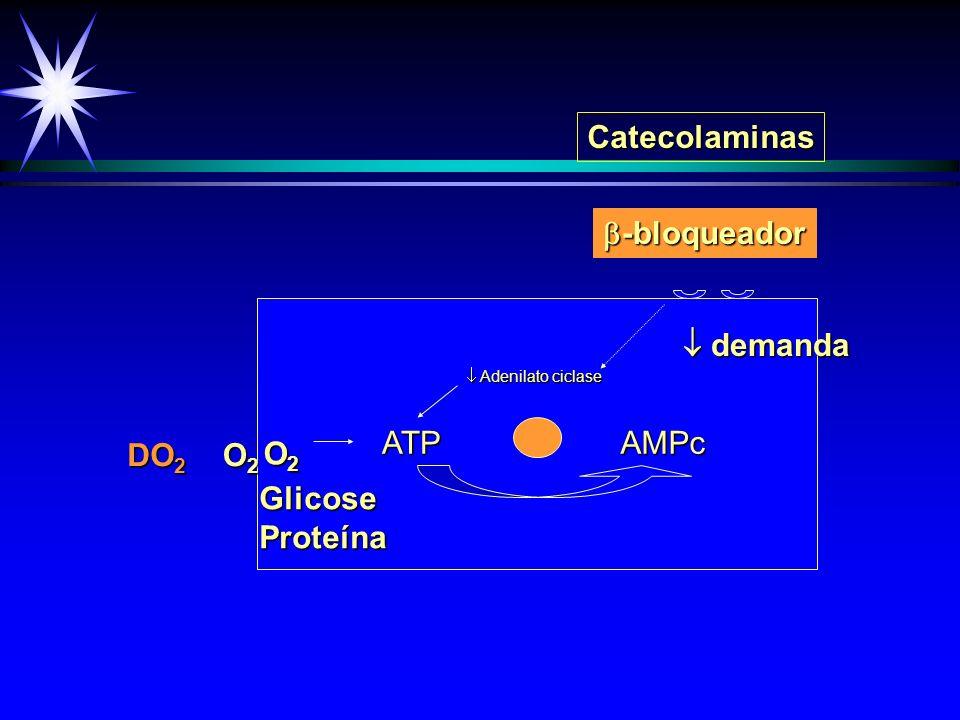 ATP ATP AMPc AMPc + O2O2O2O2 DO 2 O2O2O2O2 GlicoseProteína Catecolaminas -bloqueador -bloqueador