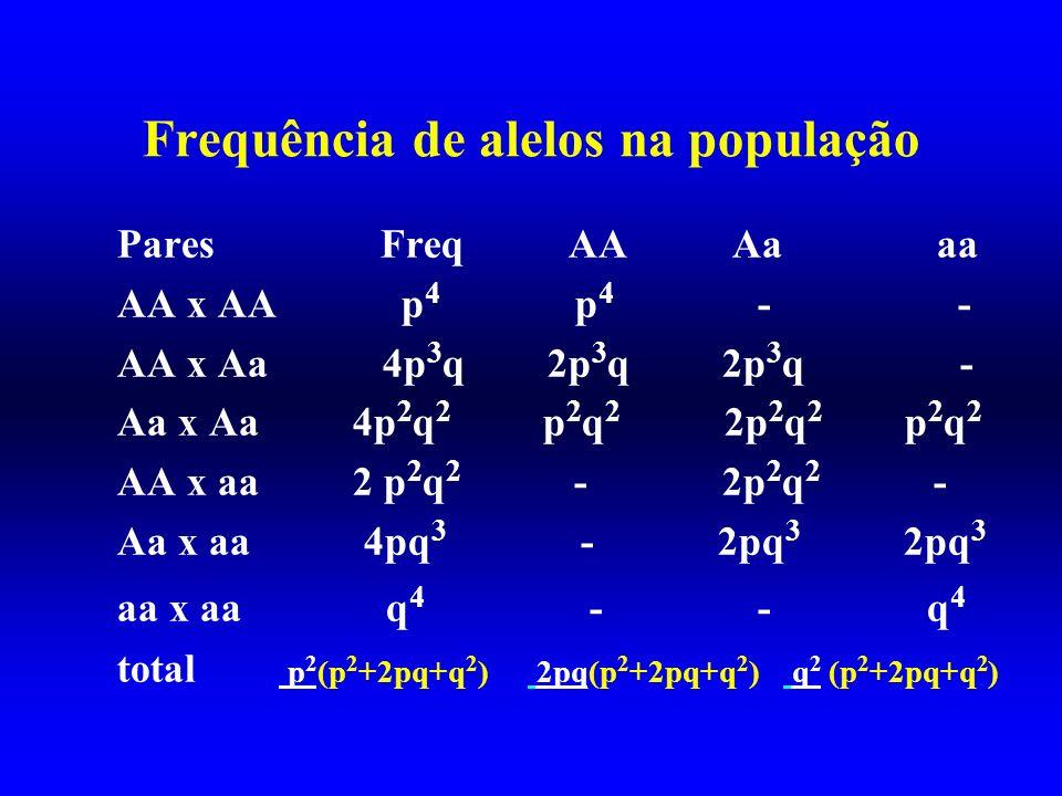 Frequência de alelos na população Pares Freq AA Aa aa AA x AA p 4 p 4 - - AA x Aa 4p 3 q 2p 3 q 2p 3 q - Aa x Aa 4p 2 q 2 p 2 q 2 2p 2 q 2 p 2 q 2 AA
