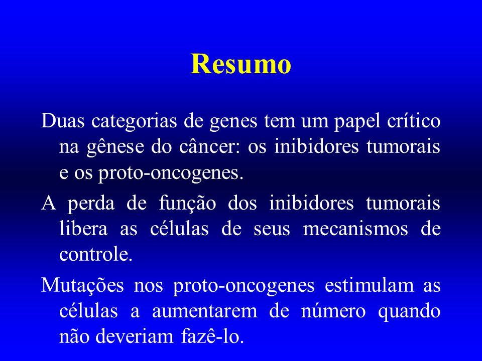 Resumo Mutações nos genes supressores de tumores são geralmente recessivas: não existe perda de controle até que ambas cópias do gene estejam desativadas.