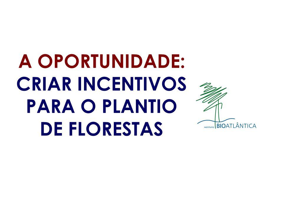 A OPORTUNIDADE: CRIAR INCENTIVOS PARA O PLANTIO DE FLORESTAS