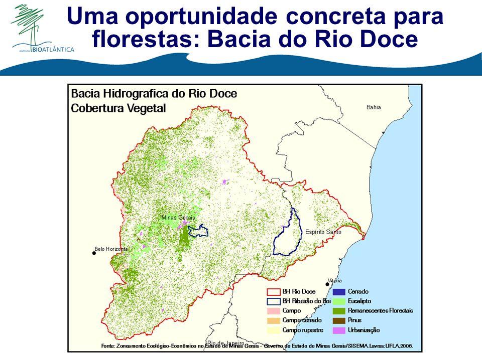 Uma oportunidade concreta para florestas: Bacia do Rio Doce