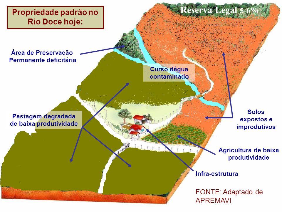 Área de Preservação Permanente deficitária Pastagem degradada de baixa produtividade Solos expostos e improdutivos Agricultura de baixa produtividade