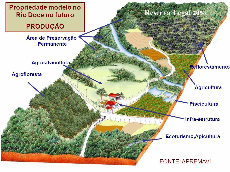 Área de Preservação Permanente Agrosilvicultura Agrofloresta Reflorestamento Agricultura Piscicultura Infra-estrutura Ecoturismo,Apicultura Reserva Le