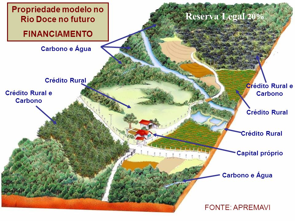 Carbono e Água Crédito Rural Crédito Rural e Carbono Crédito Rural Crédito Rural Capital próprio Carbono e Água Reserva Legal 20% FONTE: APREMAVI Prop