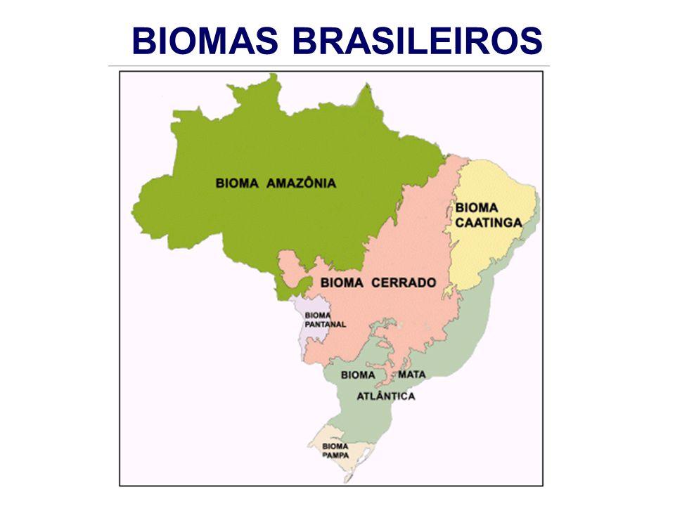 Em síntese: viabilizando o potencial florestal brasileiro INTEGRAR { Crédito Rural Fundos / compradores de C Estratégias de pagto pelo uso da água INTEGRAR { Assistência técnica rural Pesquisa florestal e agrícola Licenciamento INTEGRAR { Mobilização e articulação institucional Planejamento