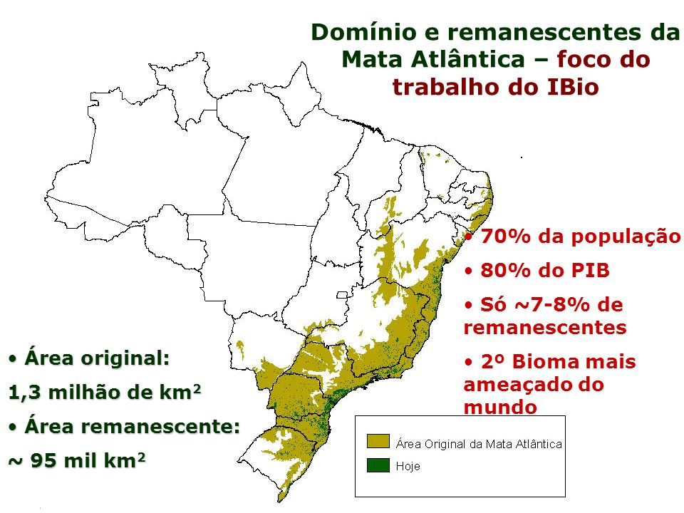 Domínio e remanescentes da Mata Atlântica – foco do trabalho do IBio Área original: Área original: 1,3 milhão de km 2 Área remanescente: Área remanesc