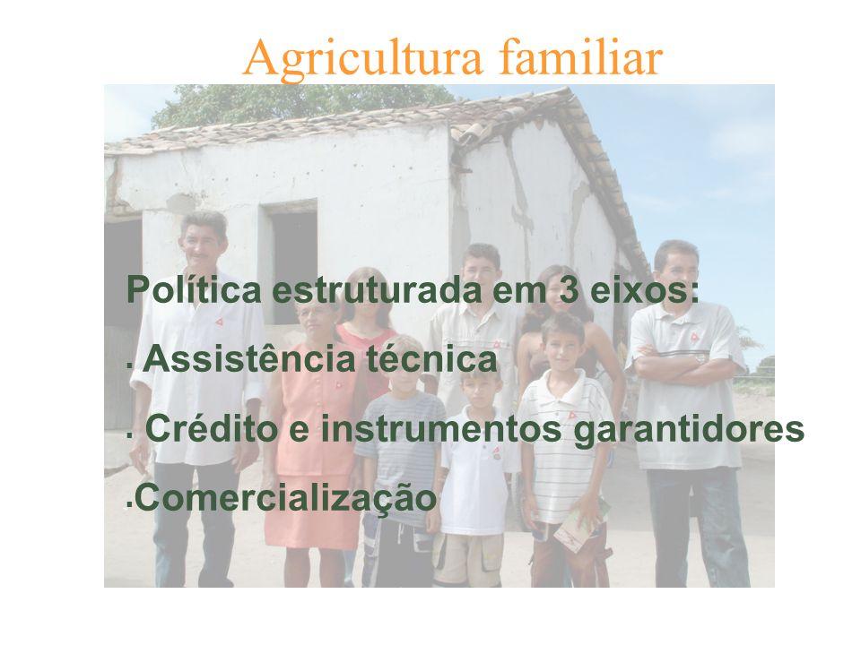 Agricultura familiar Política estruturada em 3 eixos: Assistência técnica Crédito e instrumentos garantidores Comercialização