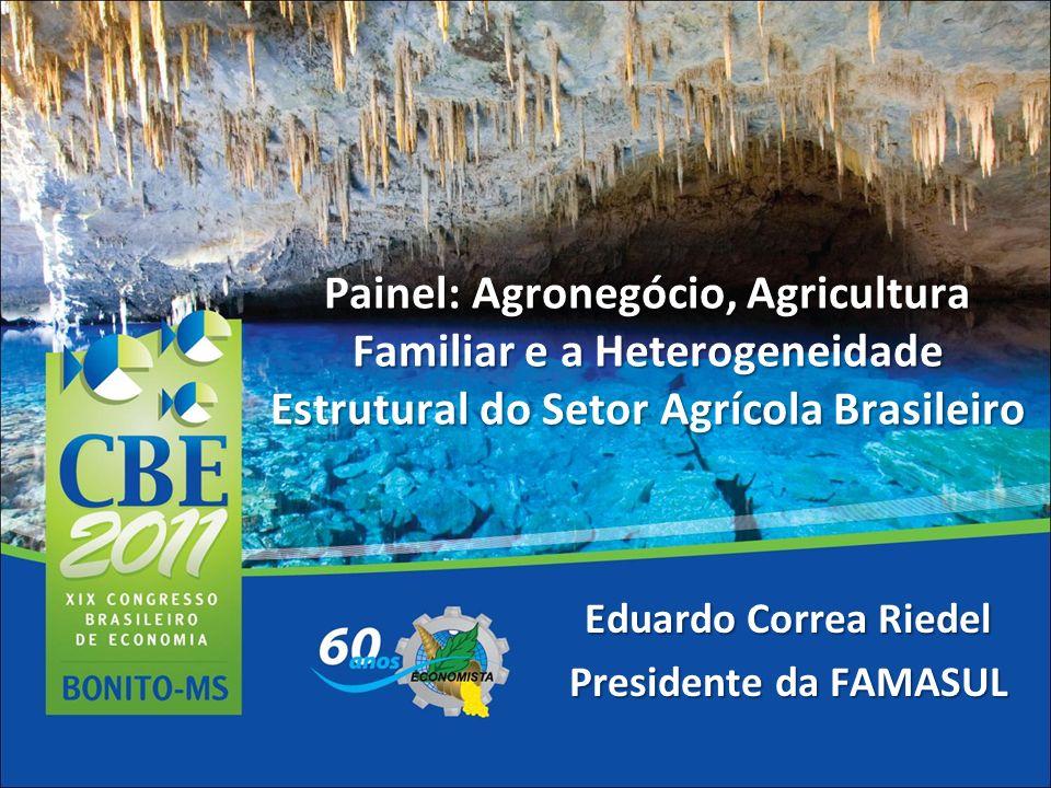 Painel: Agronegócio, Agricultura Familiar e a Heterogeneidade Estrutural do Setor Agrícola Brasileiro Eduardo Correa Riedel Presidente da FAMASUL