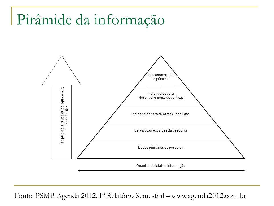 Pirâmide da informação Quantidade total de informação Indicadores para cientistas / analistas Estatísticas extraídas da pesquisa Dados primários da pe