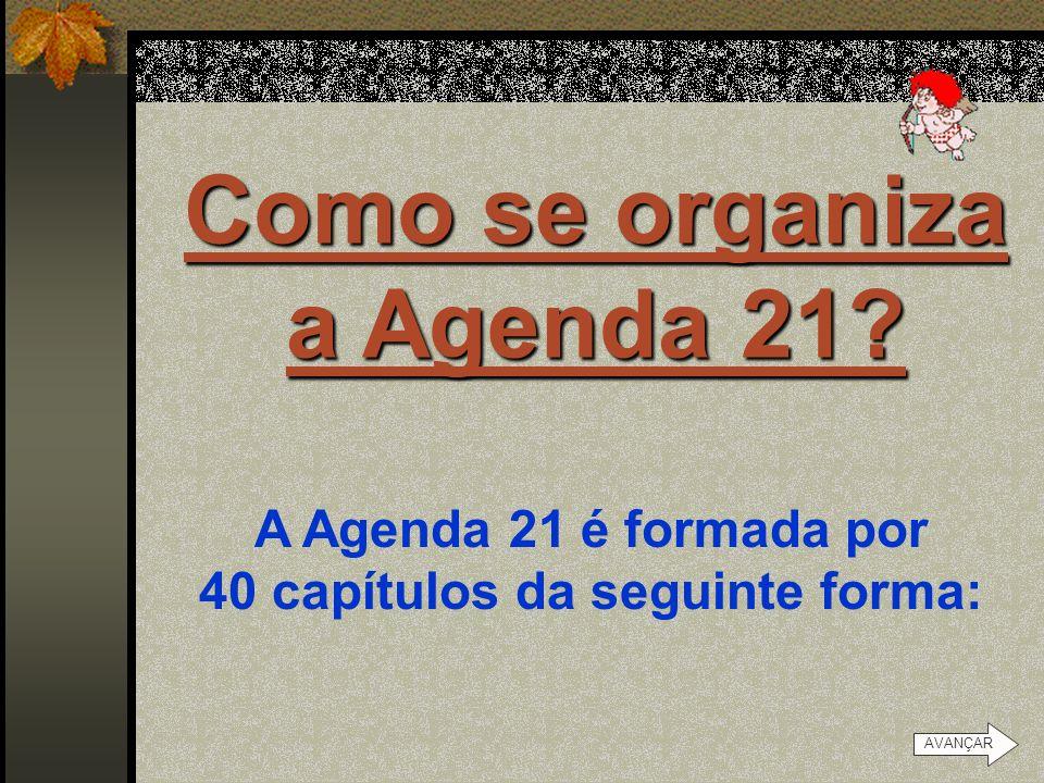 O que é Agenda 21? É um documento assinado entre os governos dos países reunidos na conferência mundial do Meio Ambiente, realizada no Rio de Janeiro,