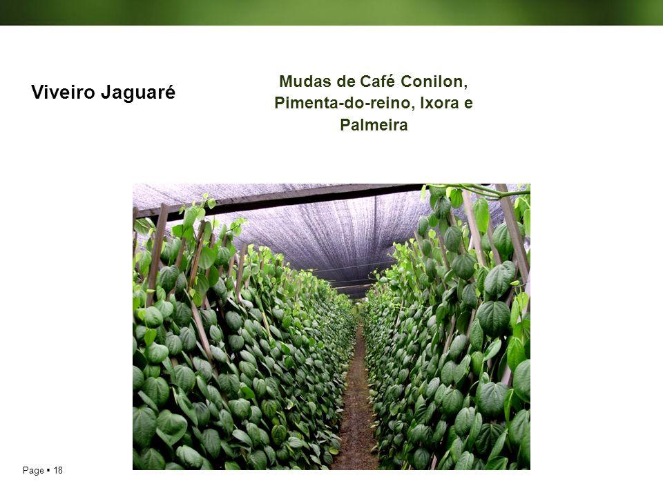 Page 18 Viveiro Jaguaré Mudas de Café Conilon, Pimenta-do-reino, Ixora e Palmeira