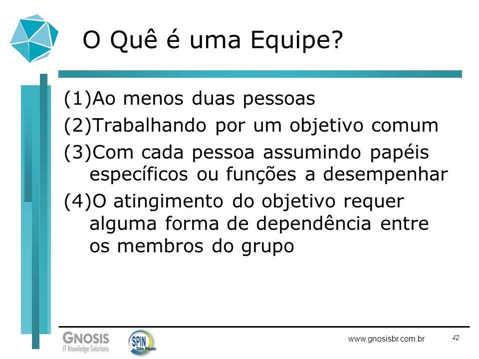 42 www.gnosisbr.com.br O Quê é uma Equipe? (1)Ao menos duas pessoas (2)Trabalhando por um objetivo comum (3)Com cada pessoa assumindo papéis específic