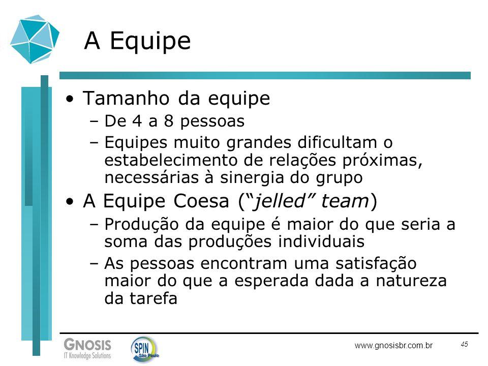45 www.gnosisbr.com.br A Equipe Tamanho da equipe –De 4 a 8 pessoas –Equipes muito grandes dificultam o estabelecimento de relações próximas, necessár