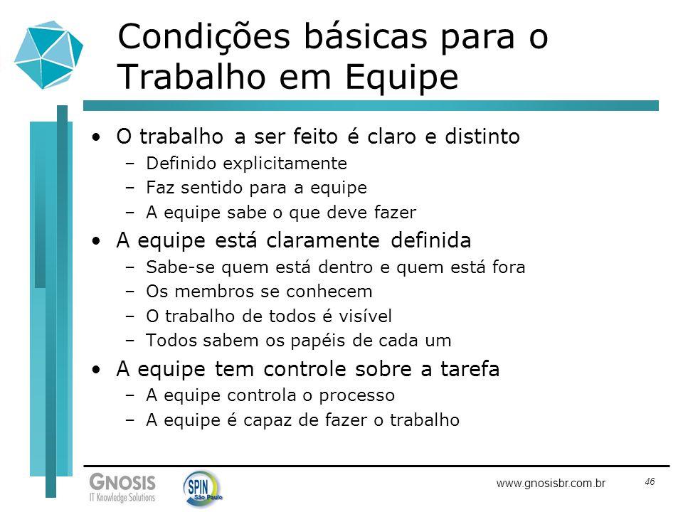 46 www.gnosisbr.com.br Condições básicas para o Trabalho em Equipe O trabalho a ser feito é claro e distinto –Definido explicitamente –Faz sentido par