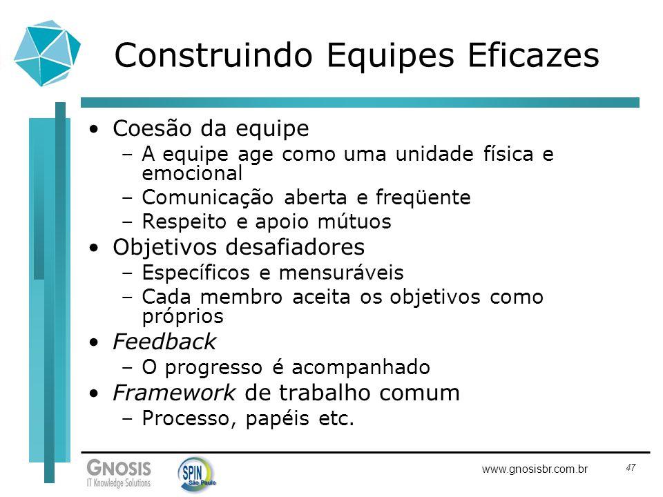 47 www.gnosisbr.com.br Construindo Equipes Eficazes Coesão da equipe –A equipe age como uma unidade física e emocional –Comunicação aberta e freqüente