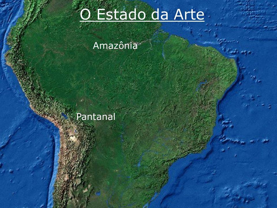 www.riosvivos.org.br O Estado da Arte Pantanal Amazônia