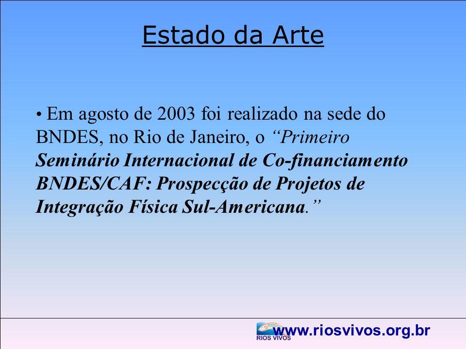 www.riosvivos.org.br Estado da Arte Em agosto de 2003 foi realizado na sede do BNDES, no Rio de Janeiro, o Primeiro Seminário Internacional de Co-fina